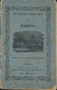bird-cover