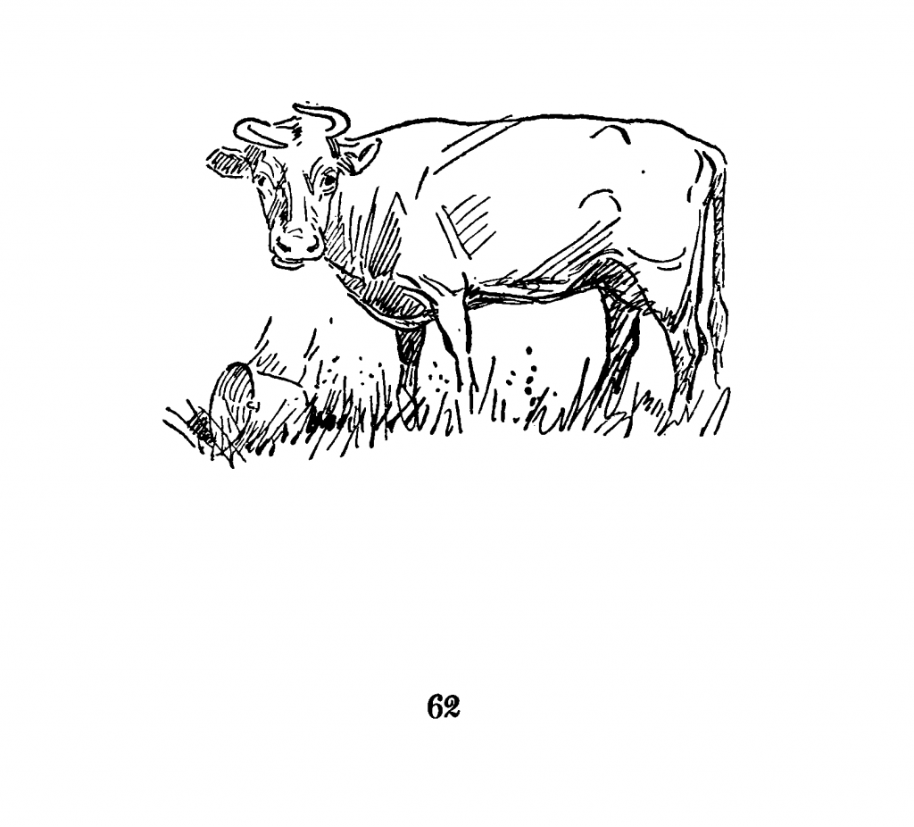 "Page 62 of ""The red cow and her friends"""